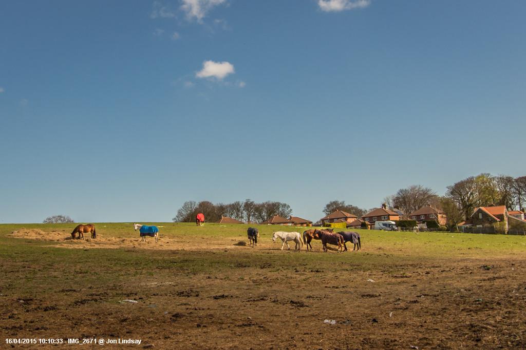 Springwell Village (2 of 43)